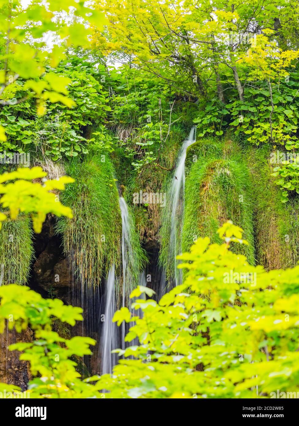 National park Plitvice lakes in Croatia Europe water flowing waterflow waterfall scenic scenery Stock Photo