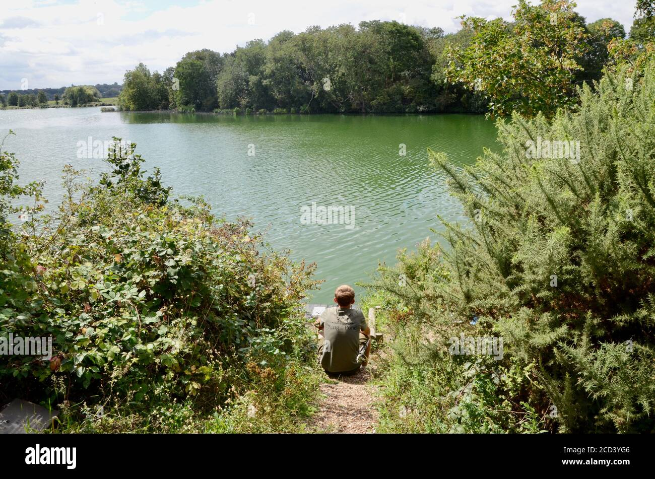 fisherman fishing at walthamstow wetlands reservoirs N17 ferry lane london england UK Stock Photo