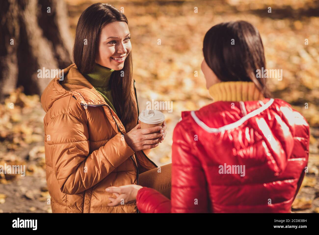 Profile Side View Portrait Of Two Nice Attractive Lovely Pretty Friendly Cheerful Cheery Best Girlfriends Spending Weekend Talking Discussing New Stock Photo Alamy