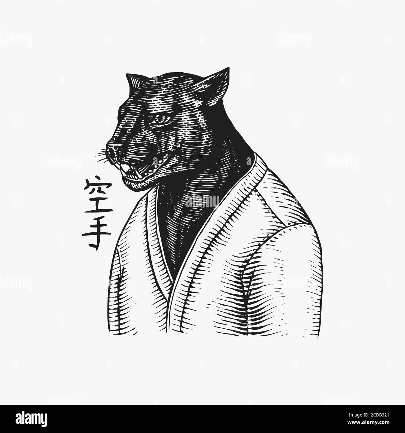 Black Panther Wrestler Or Cat Fighter Japanese Text Means Karate Fashion Animal Character Hand Drawn Sketch Vector Engraved Illustration For Logo Stock Vector Image Art Alamy