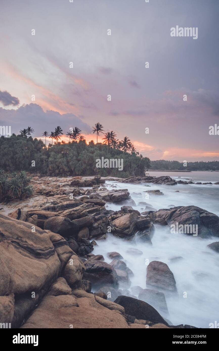 Amazing scenery of rocky coast and green palm trees near sea under picturesque sunset sky Stock Photo