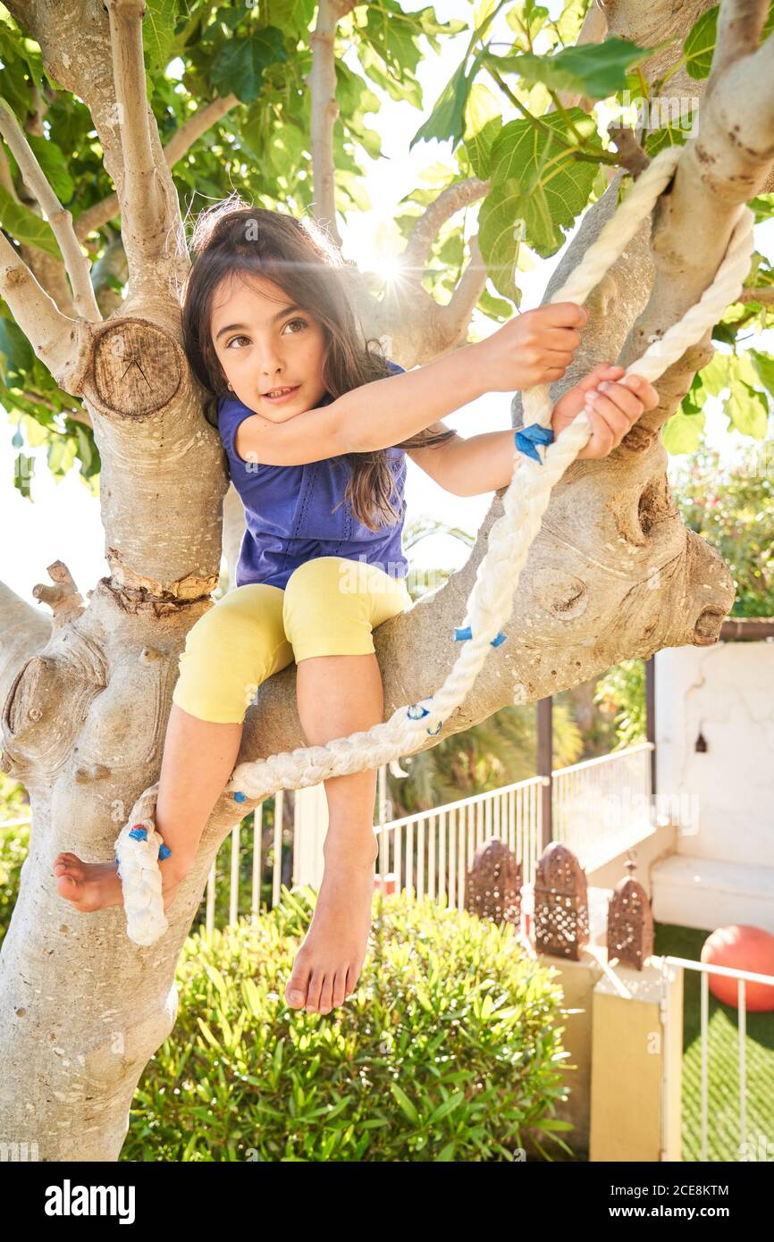 Low angle of positive little girl sitting on tree branch and preparing for jump with rope while having fun in green yard in summer day Stock Photo