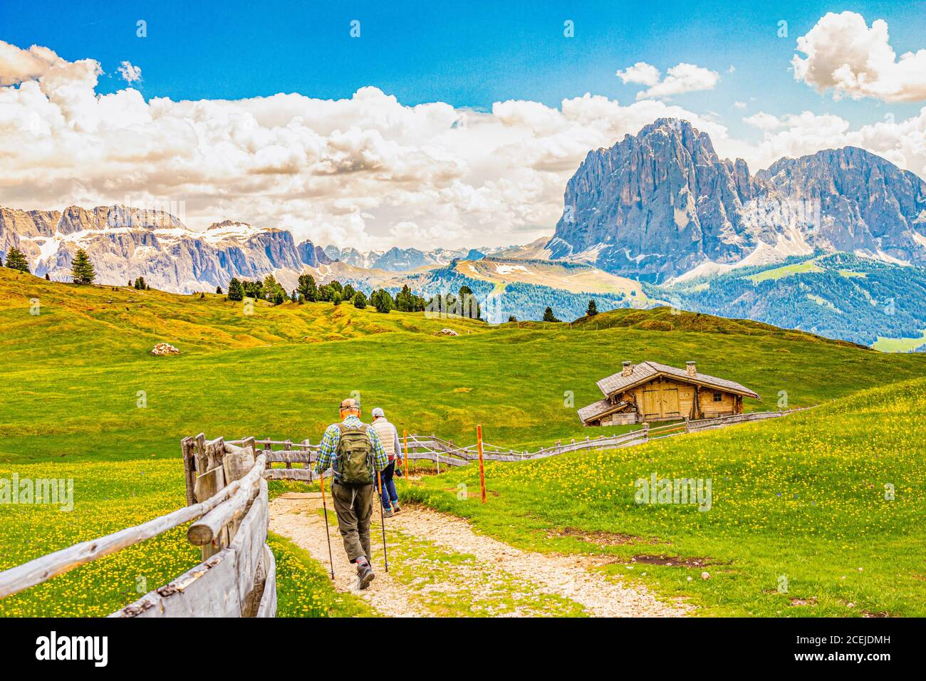 Two elderly men hiking at Seceda peak in the background view of the mountain Sassolungo or Longkofel Traveling to village St. Cristina di Val Gardena Stock Photo
