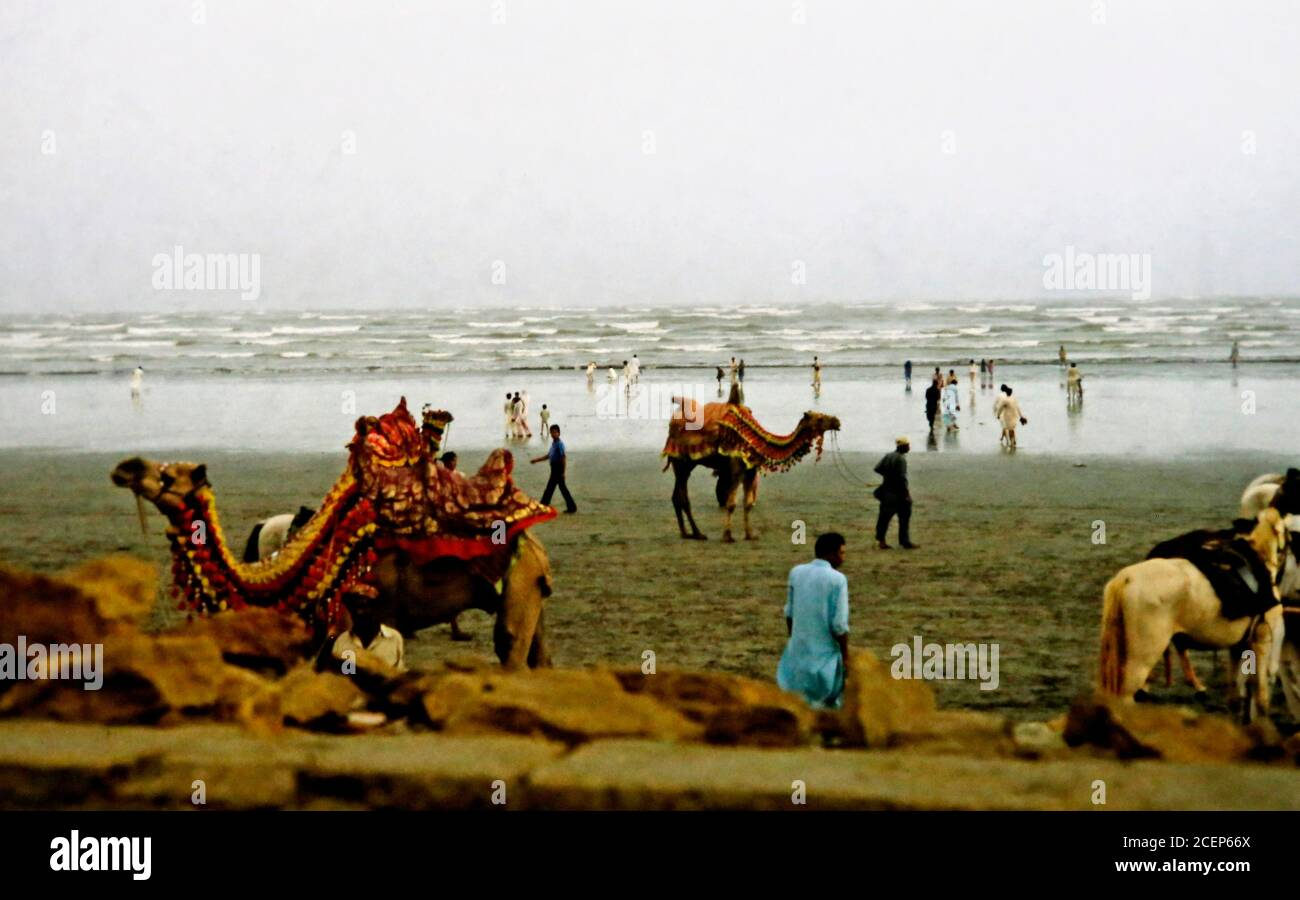 old photo of the beach of Karachi, Pakistan with camels Stock Photo