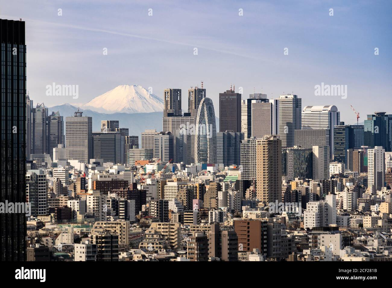 Mountain Fuji with Tokyo skylines and skyscrapers buildings in Shinjuku ward in Tokyo. Taken from Tokyo Bunkyo civic center observatory sky desk. Stock Photo
