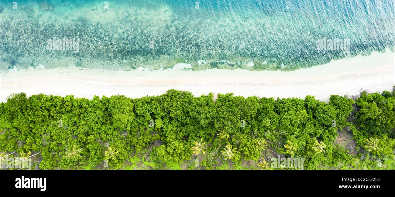 View from above, stunning aerial view of a green coast with coconut palm trees and a beautiful white sand beach bathed by a turquoise . Stock Photo