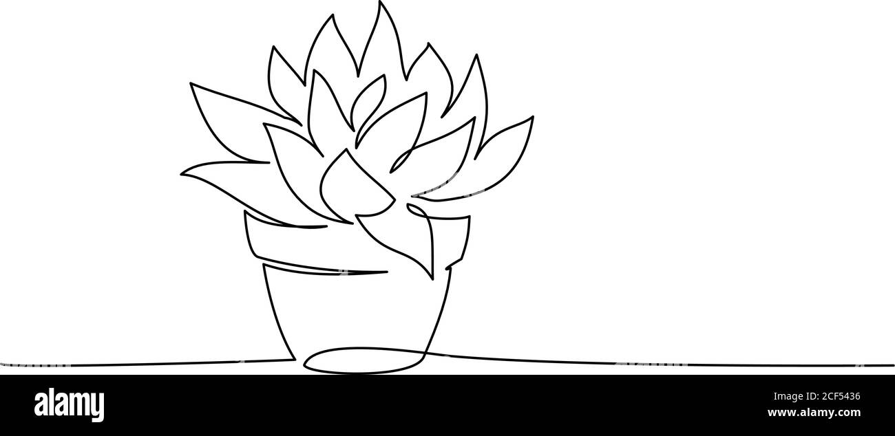 House Plant In Pot Continuous One Line Drawing Isolated On White Background Vector Illustration Stock Vector Image Art Alamy