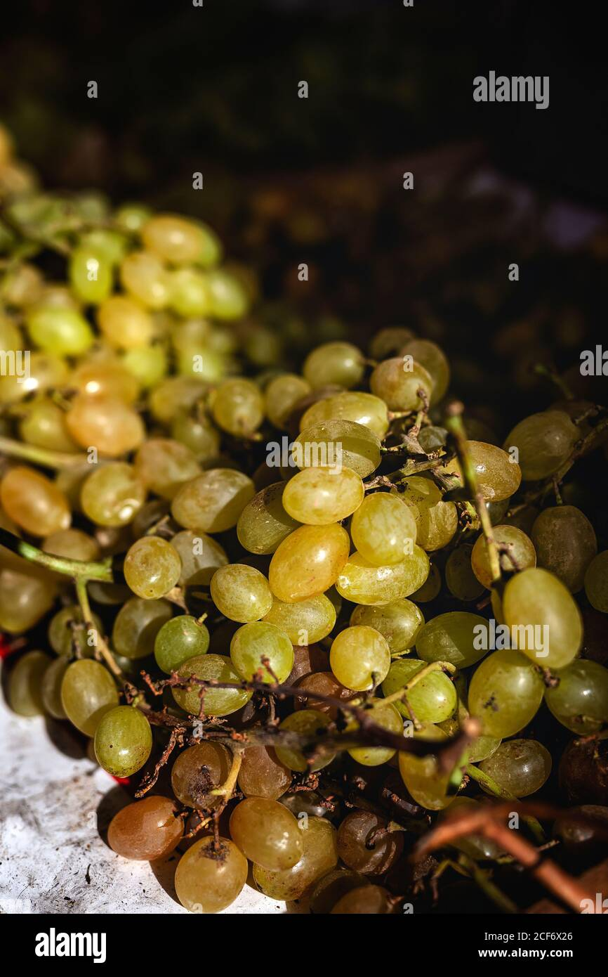 street market of assortment of fresh fruits and vegetables.Healthy food.Organic. farming. grapes Stock Photo