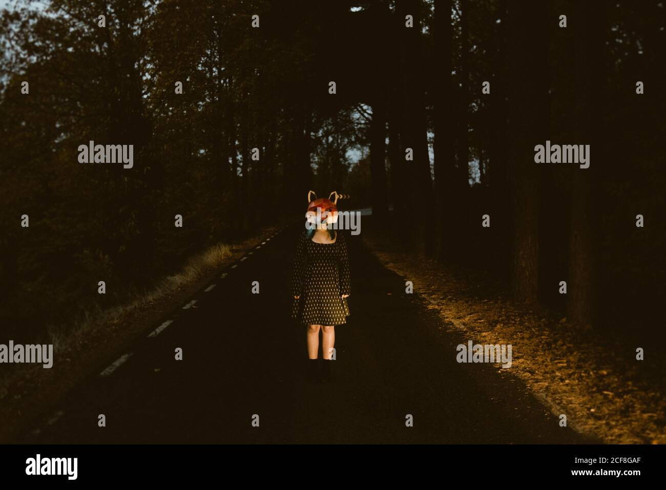 anonymous female in paper fox mask standing in the middle of forest alley at night. Concept of animal road casualties or roadkill Stock Photo