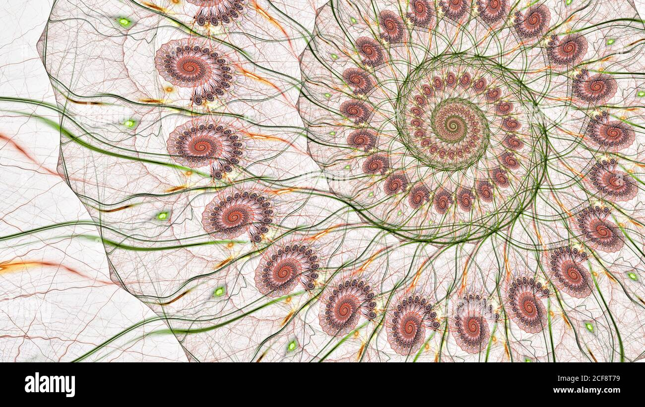 Colorful spiral structure lines on white, computer generated abstract background, 3D rendering Stock Photo