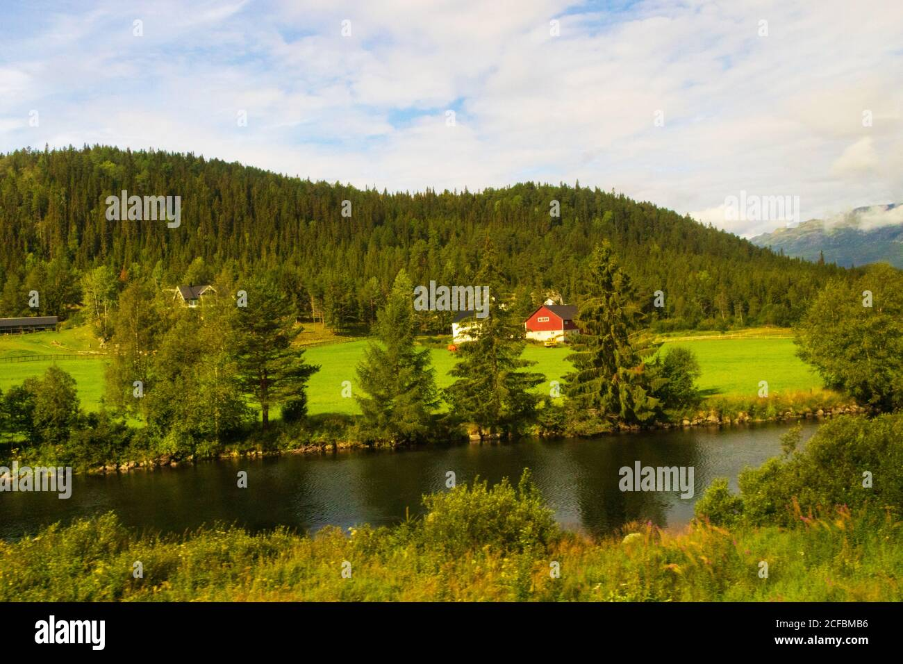 Summertime scenery,lush greenery,beautiful landscape,Storåne river Innlandet county.Tyinvegen Vang,Norway seeen from route European route E16 Stock Photo