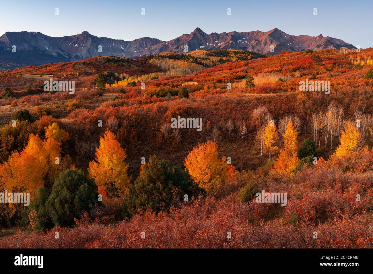 Dallas Divide With Fall Colors In The San Juan Mountains Colorado Stock Photo Alamy
