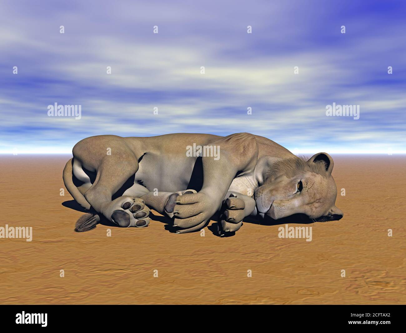lions on meadow Stock Photo