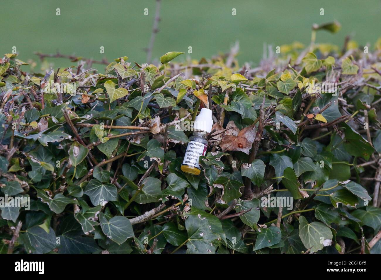 Plastic litter in countryside. Small plastic bottle with white top containing addictive nicotine substance, vaping fluid bottle, disposed of in hedge Stock Photo