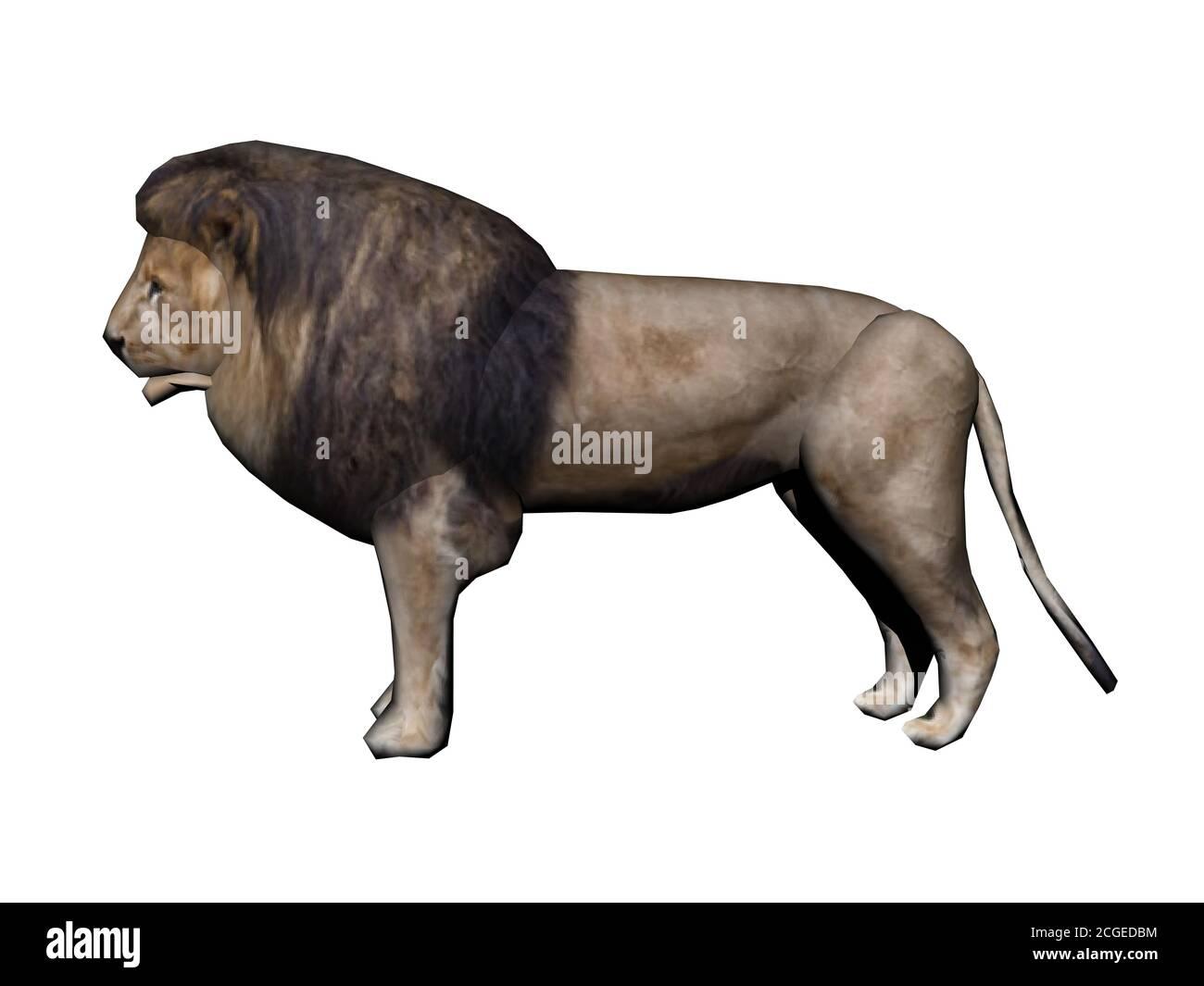Danger Lion Stock Photo