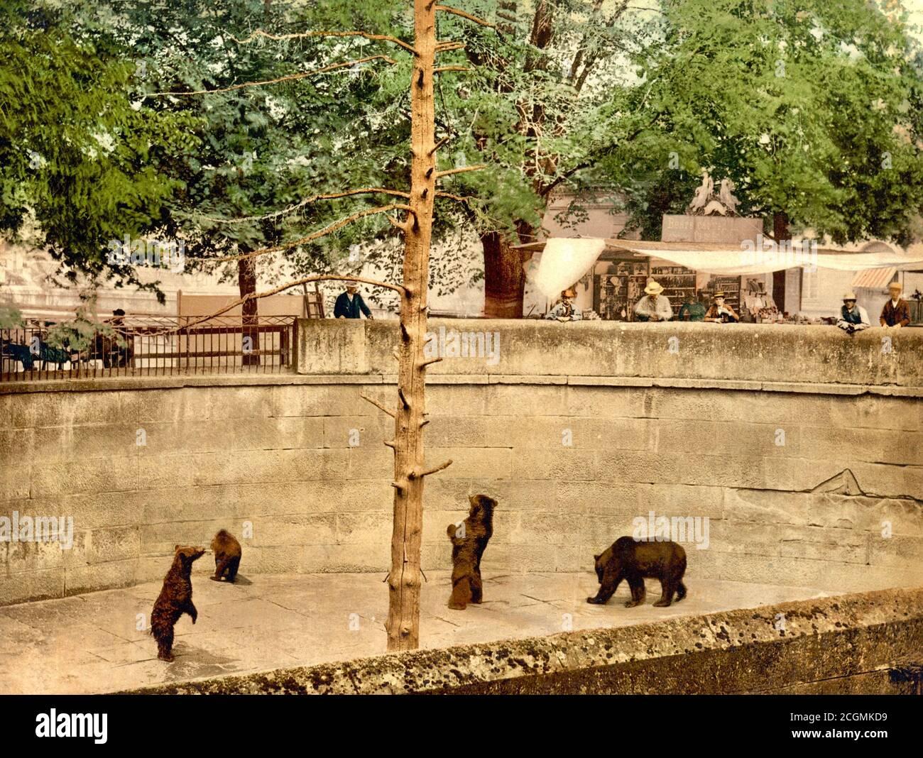 Bärengraben, bear pit, Bern, Switzerland 1890. Stock Photo