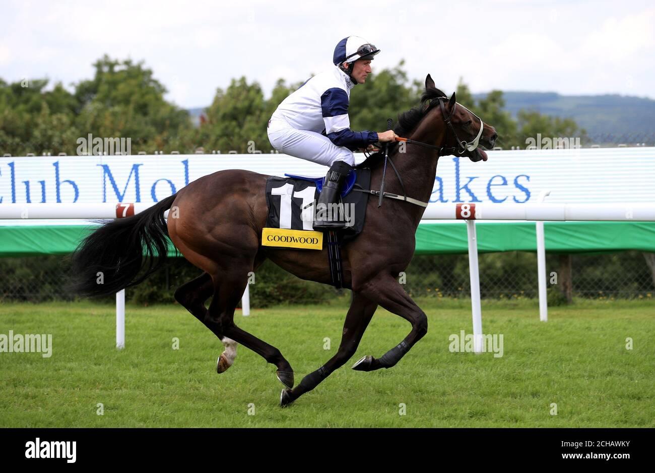 Jockey John F Egan goes to post on Rapacity Alexander before the Victoria Racing Club Molecomb Stakes Stock Photo