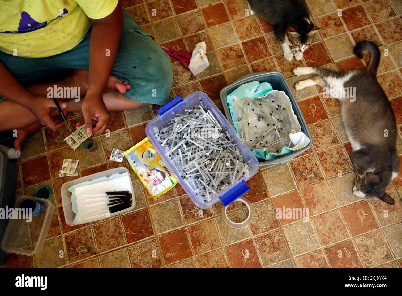 A Groomer And Medical Technician Of A Cat Shelter Called Rumah Kucing Parung Prepares Vitamin And