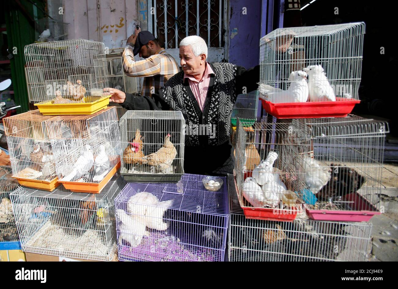 A man sells animals at the Ghazal pet market in Baghdad, Iraq November 17, 2017. REUTERS/Khalid Al-Mousily Stock Photo