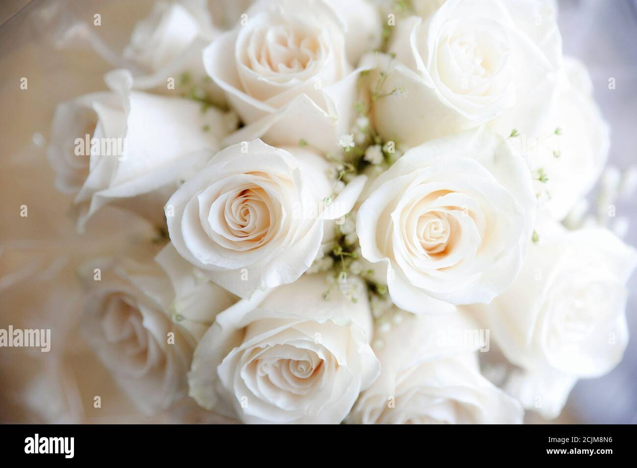Close Up Of White Roses And Baby S Breath Bridal Bouquet Romantic Floral Arrangement And Bride S Or Bridesmaids Accessory For The Wedding Day Stock Photo Alamy