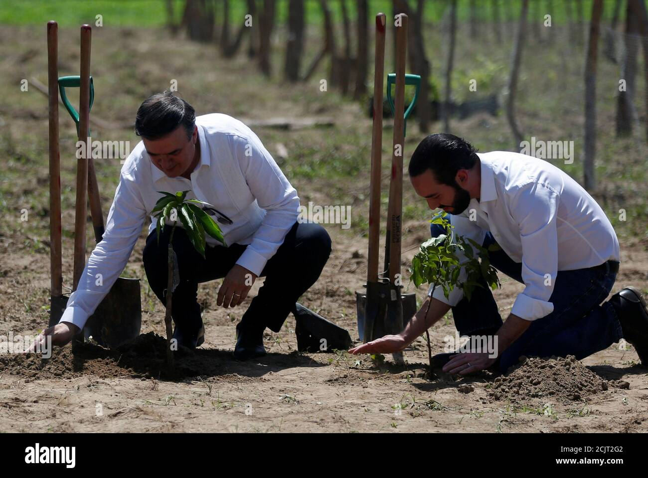 """REFILE - CORRECTING GRAMMAR El Salvador's President Nayib Bukele and Mexico's Foreign Minister Marcelo Ebrard participate in a ceremony as part of the new migration plan """"Sembrando Vida"""", between Mexico and Central America, in San Pedro Masahuat, El Salvador, July 19, 2019. REUTERS/Jose Cabezas Stock Photo"""