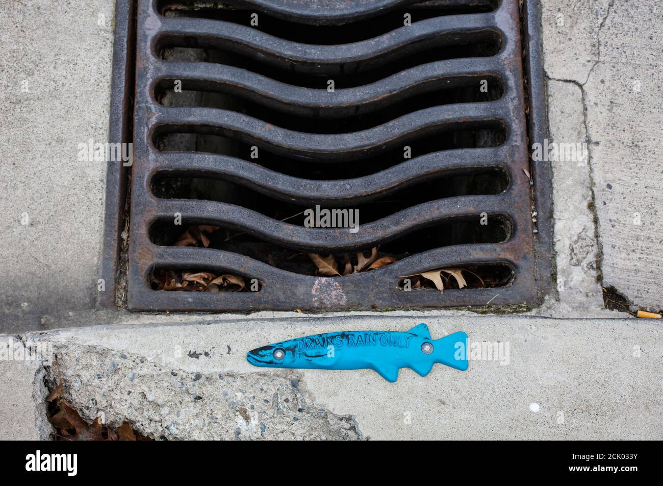 Novel drain warning. For rain-water only - no dumping of household or industrial waste down storm-water drains. Protect fish life. Stock Photo