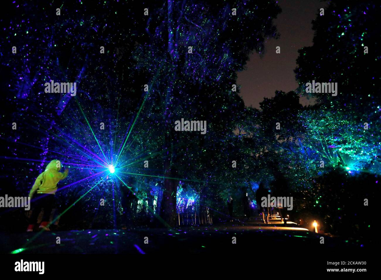 visitors walk through the installation ancient forest which is part of the exhibit enchanted forest of light at descanso gardens in la canada flintridge california us november 21 2017 reutersmario anzuoni tpx images of the day 2CKAW30 - Enchanted Forest Of Light Descanso Gardens December 21
