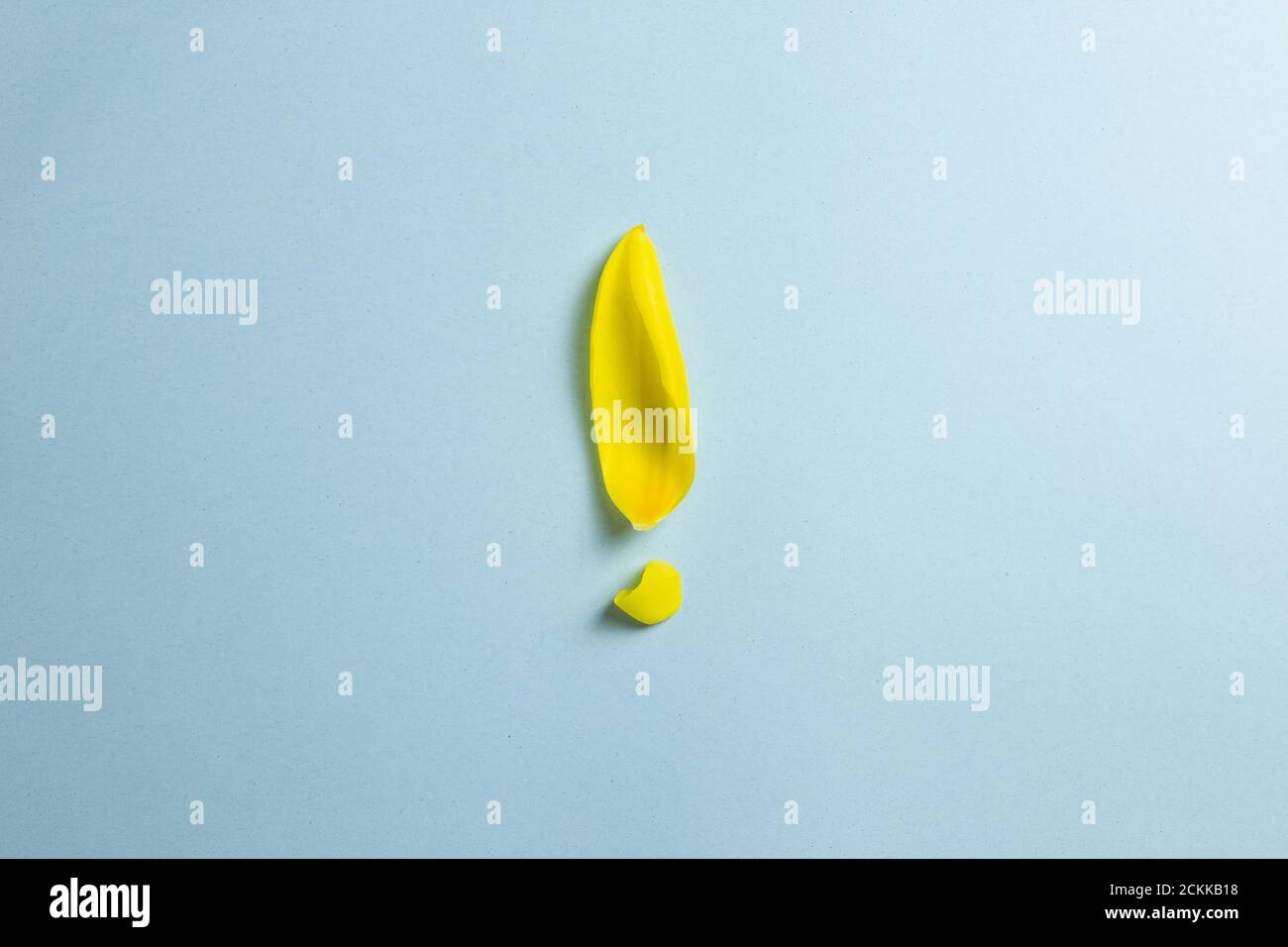 Yellow flower leaf Exclamation mark isolated on blue background. Solution idea concept Stock Photo