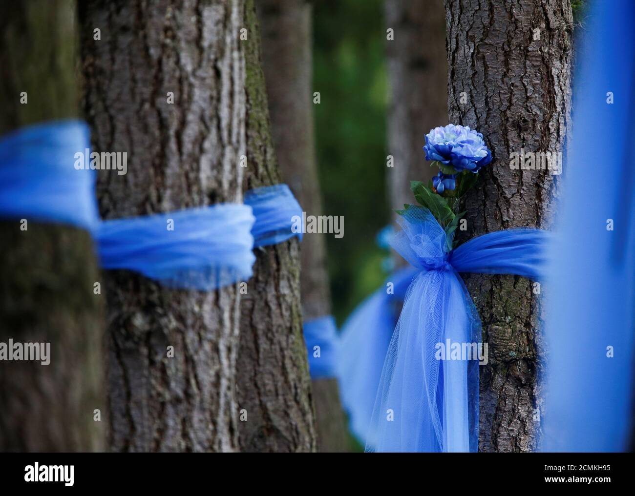 Artificial flowers are tied to trees with ribbons outside Life Care Center of Kirkland, a long-term care facility linked to several confirmed coronavirus cases, in Kirkland, Washington, U.S. March 13, 2020.  REUTERS/Lindsey Wasson Stock Photo