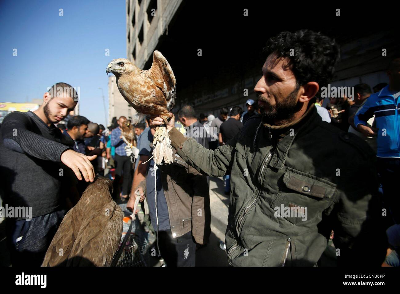 A man sells birds at the Ghazal pet market in Baghdad, Iraq November 17, 2017. REUTERS/Khalid Al-Mousily Stock Photo