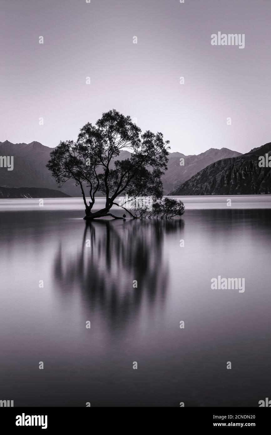 Lake Wanaka, Blue Hour, Mount-Aspiring National Park, UNESCO World Heritage Site, Otago, South Island, New Zealand, Pacific Stock Photo