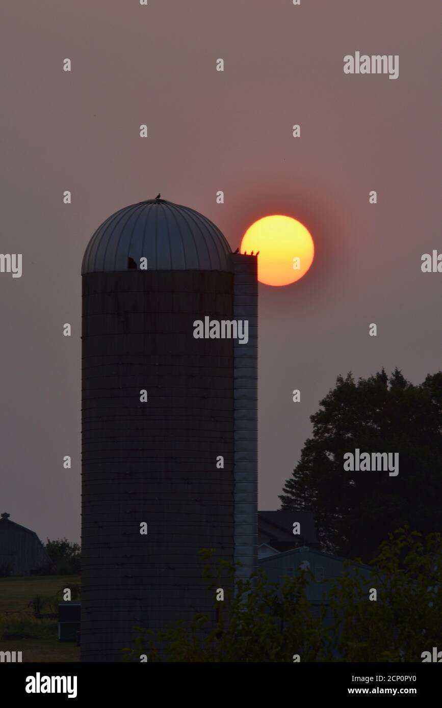 Hazy, smoke-filled sky from California and Oregon wildfires, with surreal, sunrise (no clouds) over barn and silo, Browntown, Wisconsin, USA Stock Photo