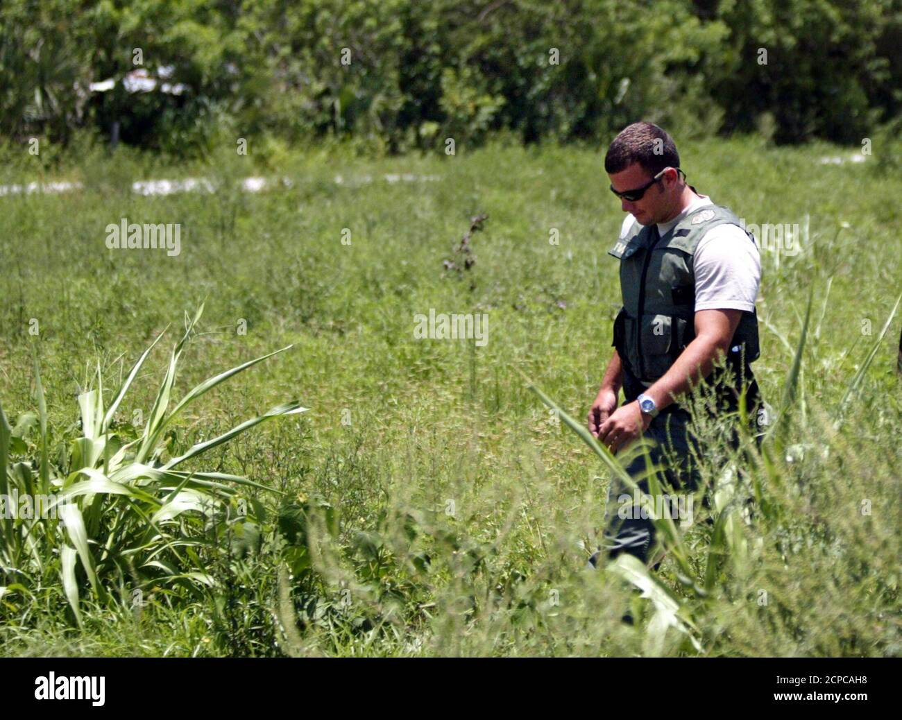 A law enforcement official from the Florida Fish and Wildlife Conservation Commission searches an area where a pet tiger escaped from a home in Loxahatchee, Florida, July 13, 2004. Declawed but not defanged, the tiger was not necessarily considered a threat to local residents, Florida Fish and Wildlife Conservation Commission spokesman Willie Puz said. REUTERS/Gary Coronado/Pool  MS Stock Photo