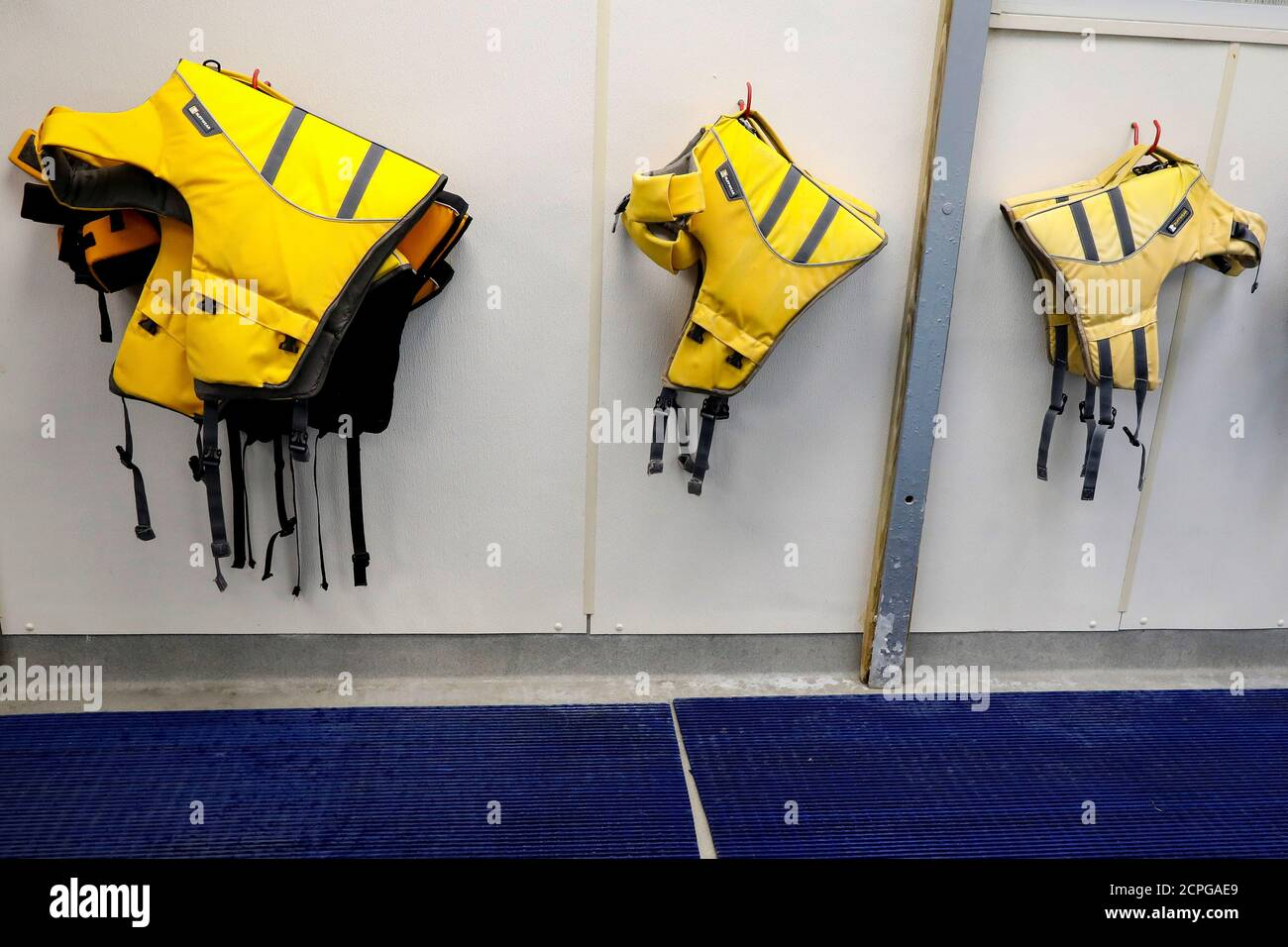 Flotation devices are hung by an indoor pool for dogs to use during a 'Wuffstock' Halloween event, at the Morristown Animal Inn in Morristown, New Jersey, U.S., October 26, 2018. Picture taken October 26, 2018. REUTERS/Brendan McDermid Stock Photo