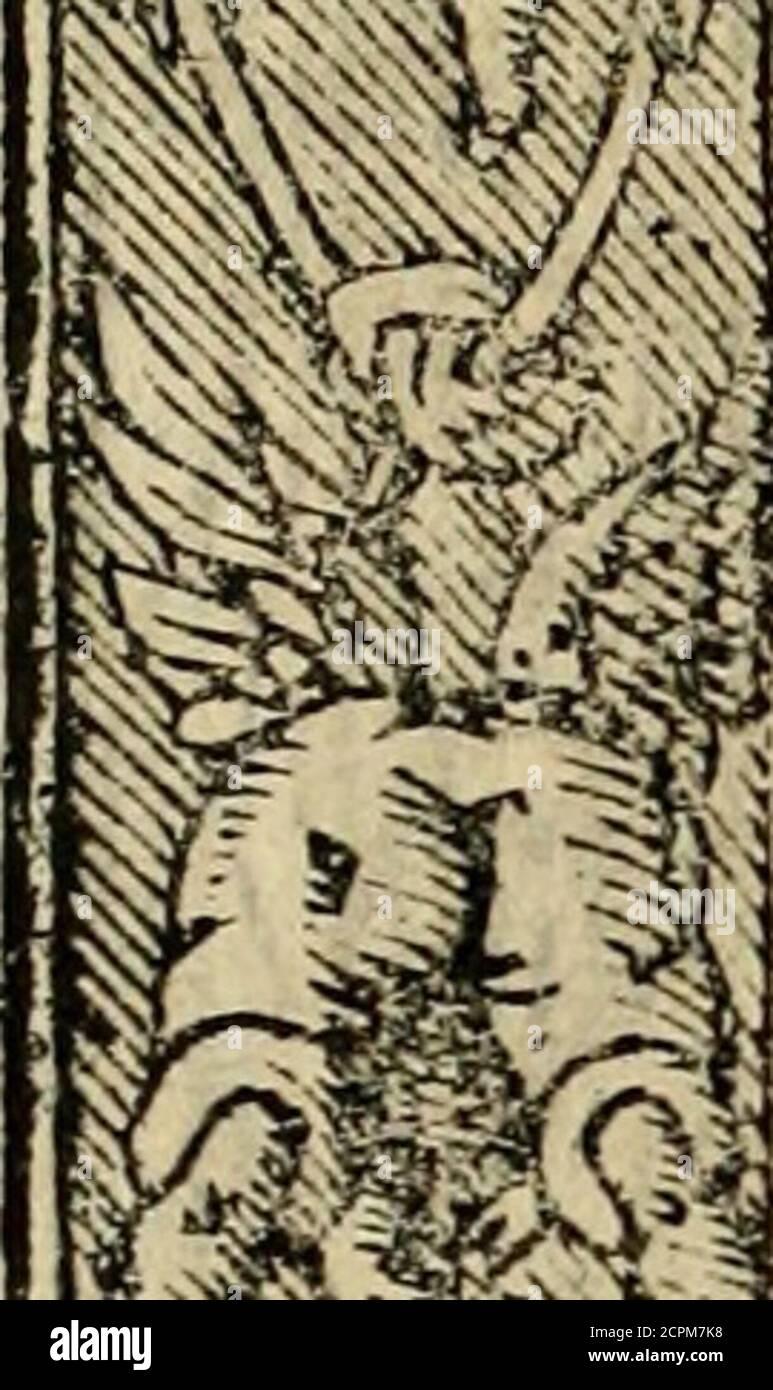 . Emblemas morales de Don Sebastian de Couarrubias Orozco, capellan del rey N.S. Maestrescuela, y canonigo de Cuenca, consultor del santo oficio . ito:Las fji I Jets opinionesjj sf rabadasJlno aduertidOyjdcaran de tiento^Lieprefént ando por verdad conflantíLa mentira, qide encana al íno^ate. ák m ííl^fKS^. Stock Photo