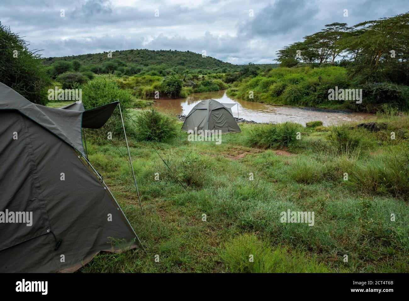 Camel safari at Sosian Ranch, Laikipia County, Kenya Stock Photo