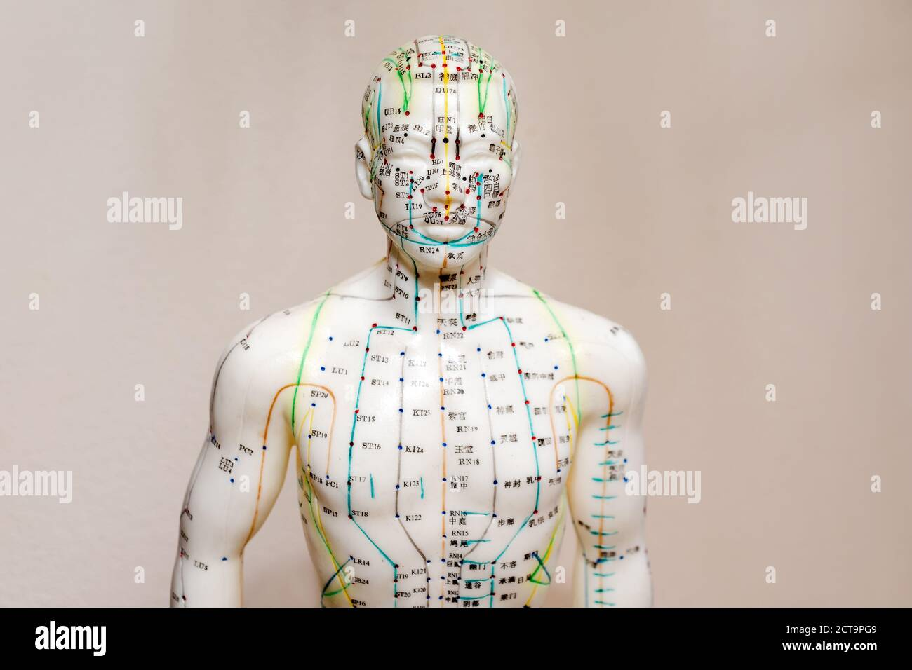 Oriental Medicine model in hospital. Plastic male acupuncture model. Traditional Chinese medicine. It is most often used to attempt pain relief Stock Photo