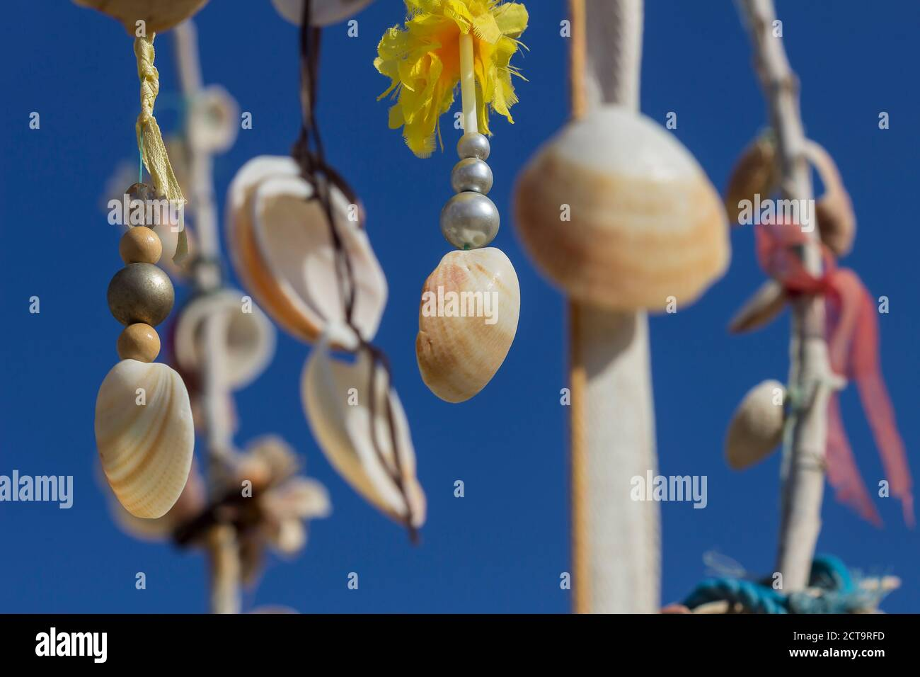 Spain, Balearic Islands, Formentera, Wish tree with mussels Stock Photo