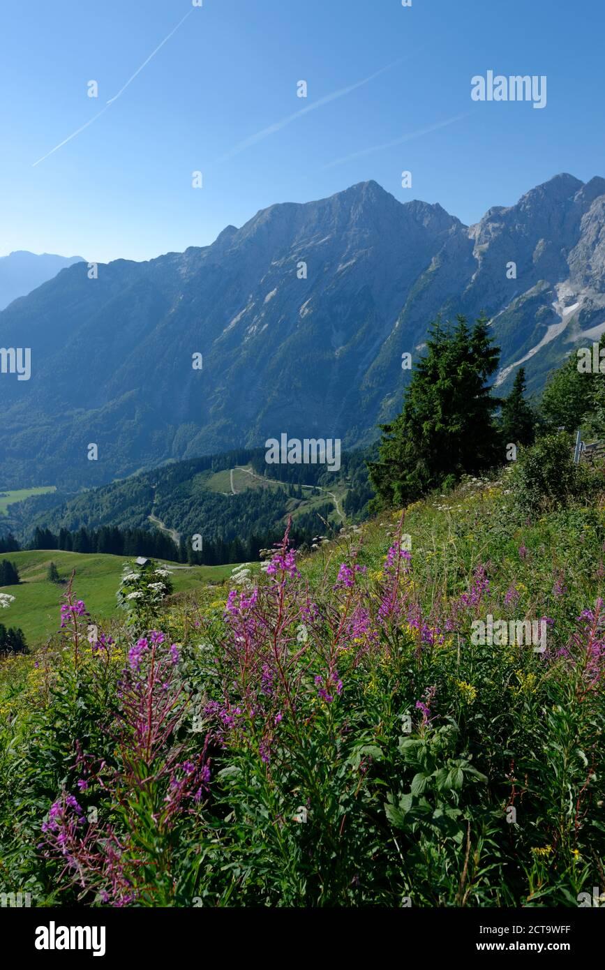 Germany, Bavaria, Upper Bavaria, Alps, Berchtesgadener Land, Hoher Goell and Freieck at Rossfeldstrasse Stock Photo