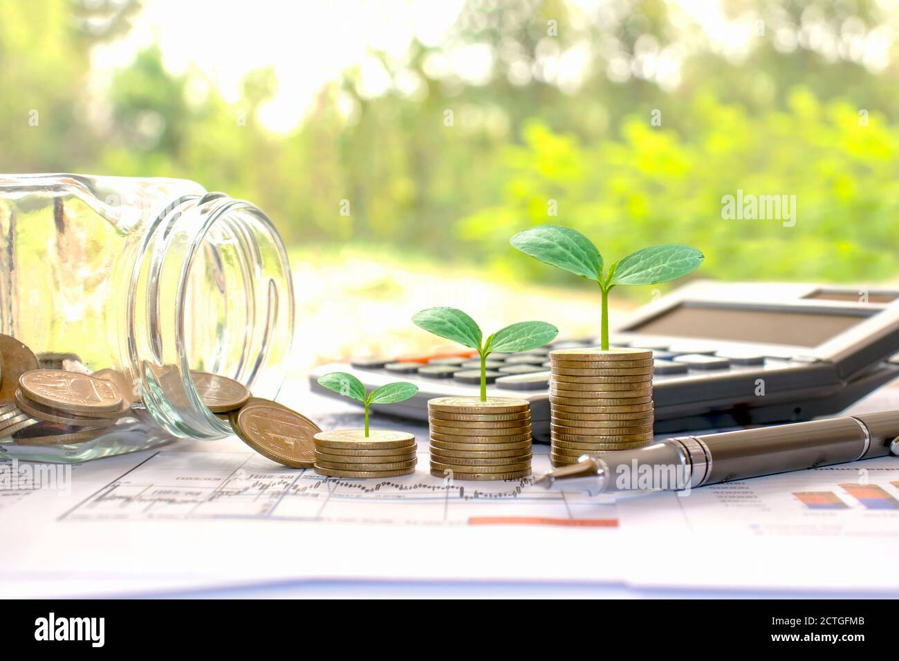 Plant small green trees on coins and calculators, financial accounting concepts and save money. Stock Photo