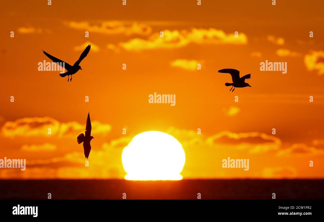 Birds are seen as the sun sets over the Bristol Channel, Weston-super-Mare, Britain, September 26, 2020.  REUTERS/Peter Cziborra Stock Photo