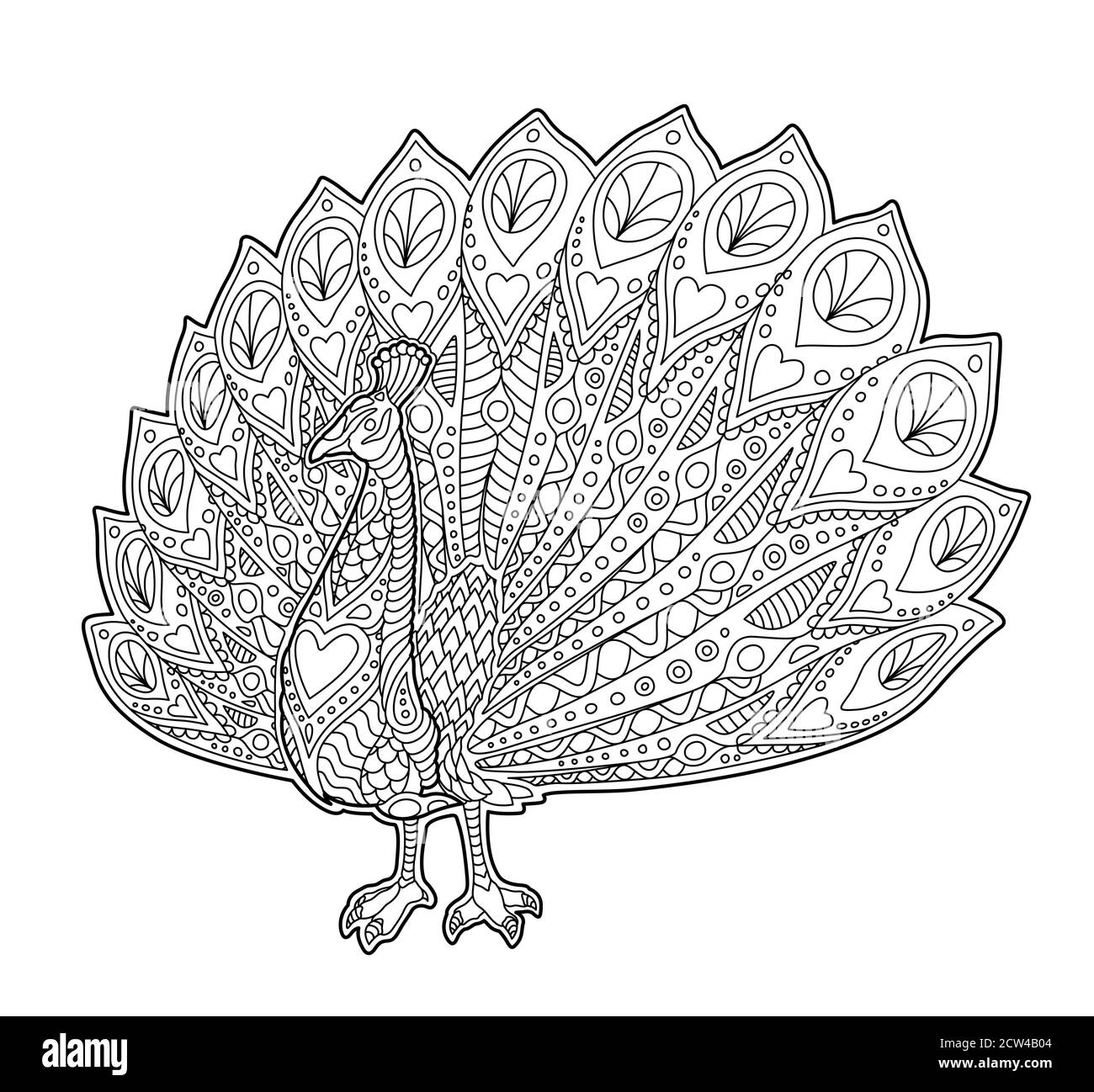 cartoon peacock high resolution stock photography and images alamy https www alamy com beautiful adult coloring book page with funny cartoon peacock on white background image376880564 html