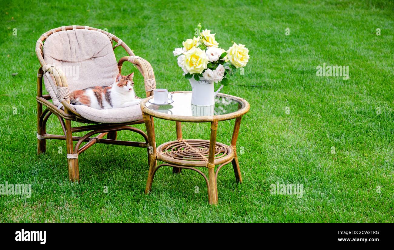 Wooden Garden Furniture High Resolution Stock Photography and