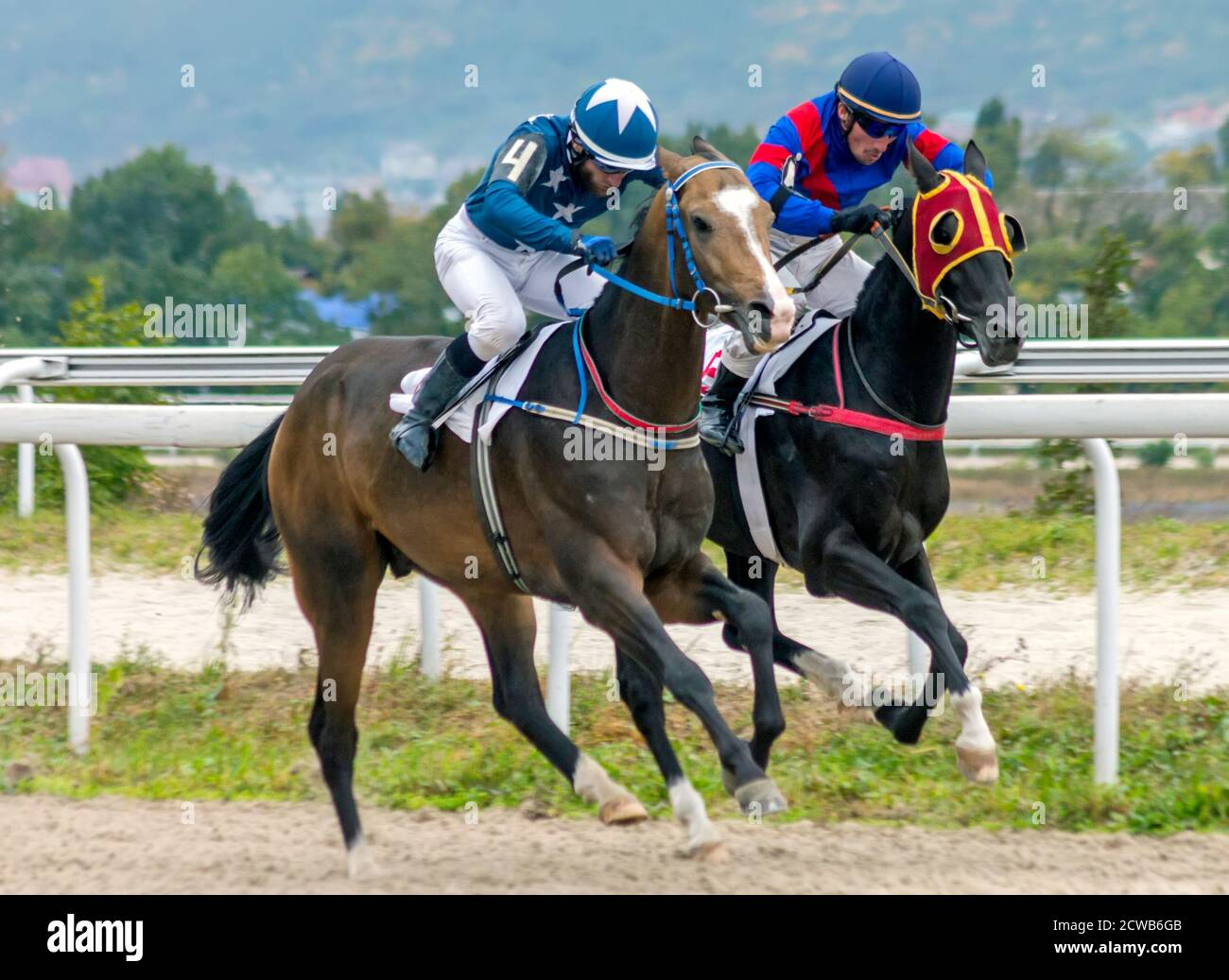 Arabian Horse Racing High Resolution Stock Photography And Images Alamy