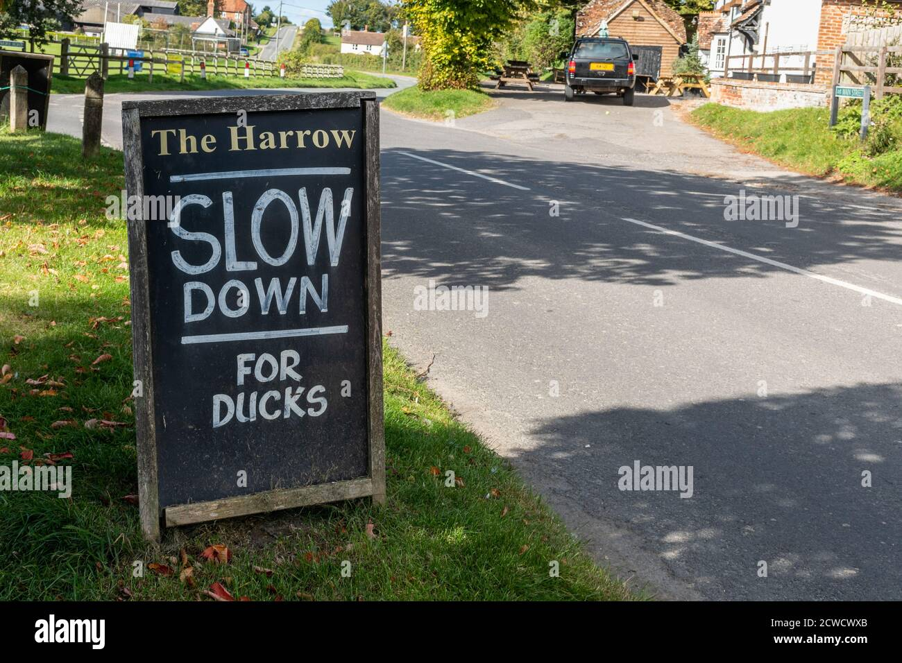 West Ilsley, Berkshire, UK - sign close to The Harrow Pub and duck pond asking drivers to slow down for ducks Stock Photo