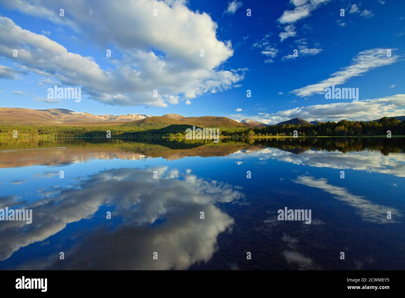 Loch Morlich, Badenoch and Strathspey, Highlands, Scotland Stock Photo