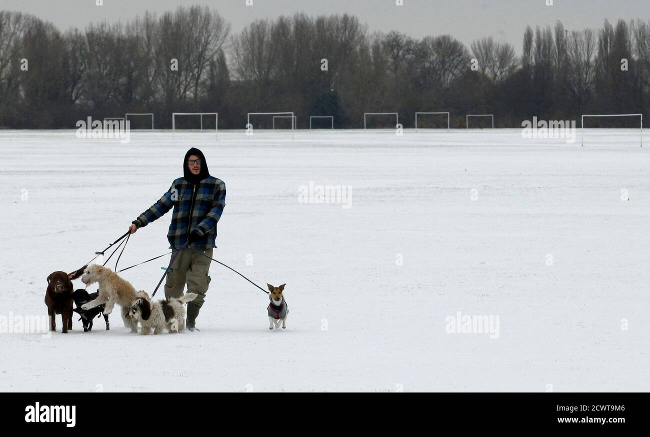 Dog walker Josh Williams walks in the snow on Hackney Marshes in east London December 1, 2010. British gas and power prices soared early on Wednesday as a cold snap elevated demand for heating and as neighbouring markets required imports from Britain to meet their own high energy consumption.    REUTERS/Luke MacGregor   (REUTERS - Tags: ENVIRONMENT POLITICS SPORT SOCCER) Stock Photo