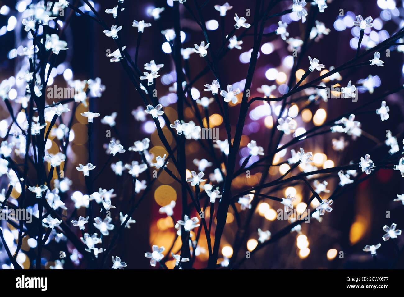 Garlands with defocused lights on winter tree outdoor in the night time. Selective focus Stock Photo