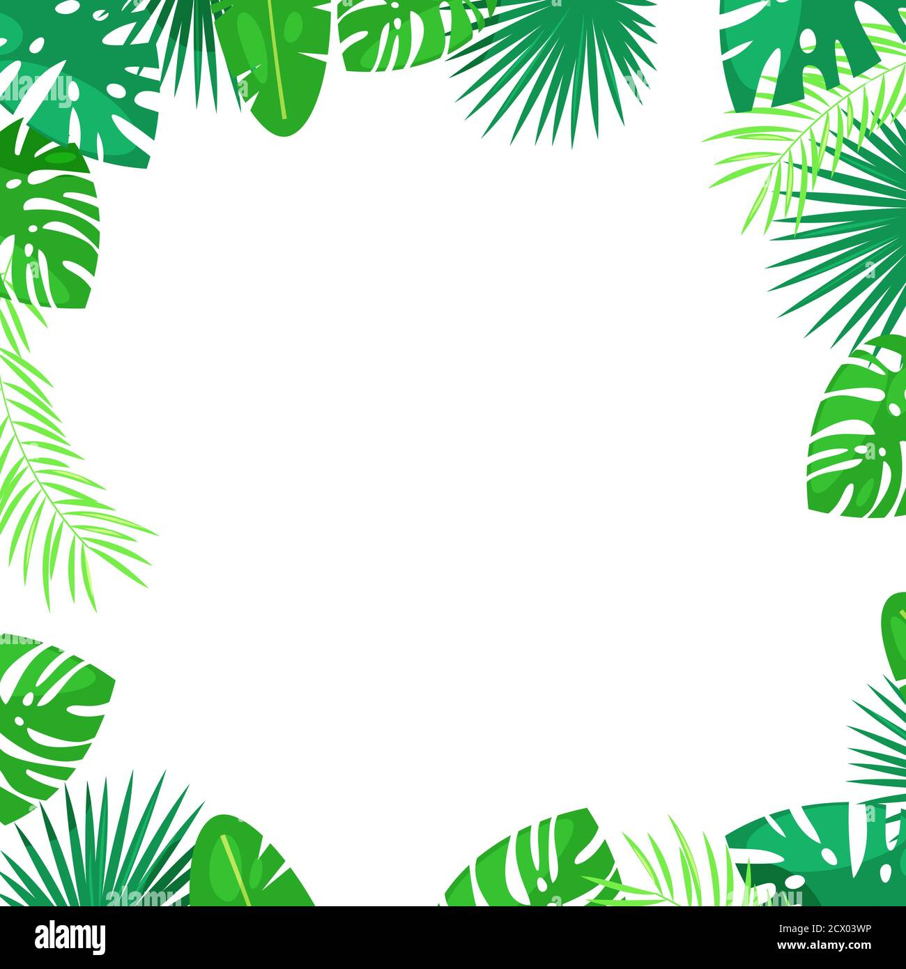 Jungle Border Cartoon High Resolution Stock Photography And Images Alamy Are you searching for cartoon tree png images or vector? https www alamy com tropical palm leaves vector square frame white background with place for text jungle exotic plants summer cartoon illustration image377401858 html
