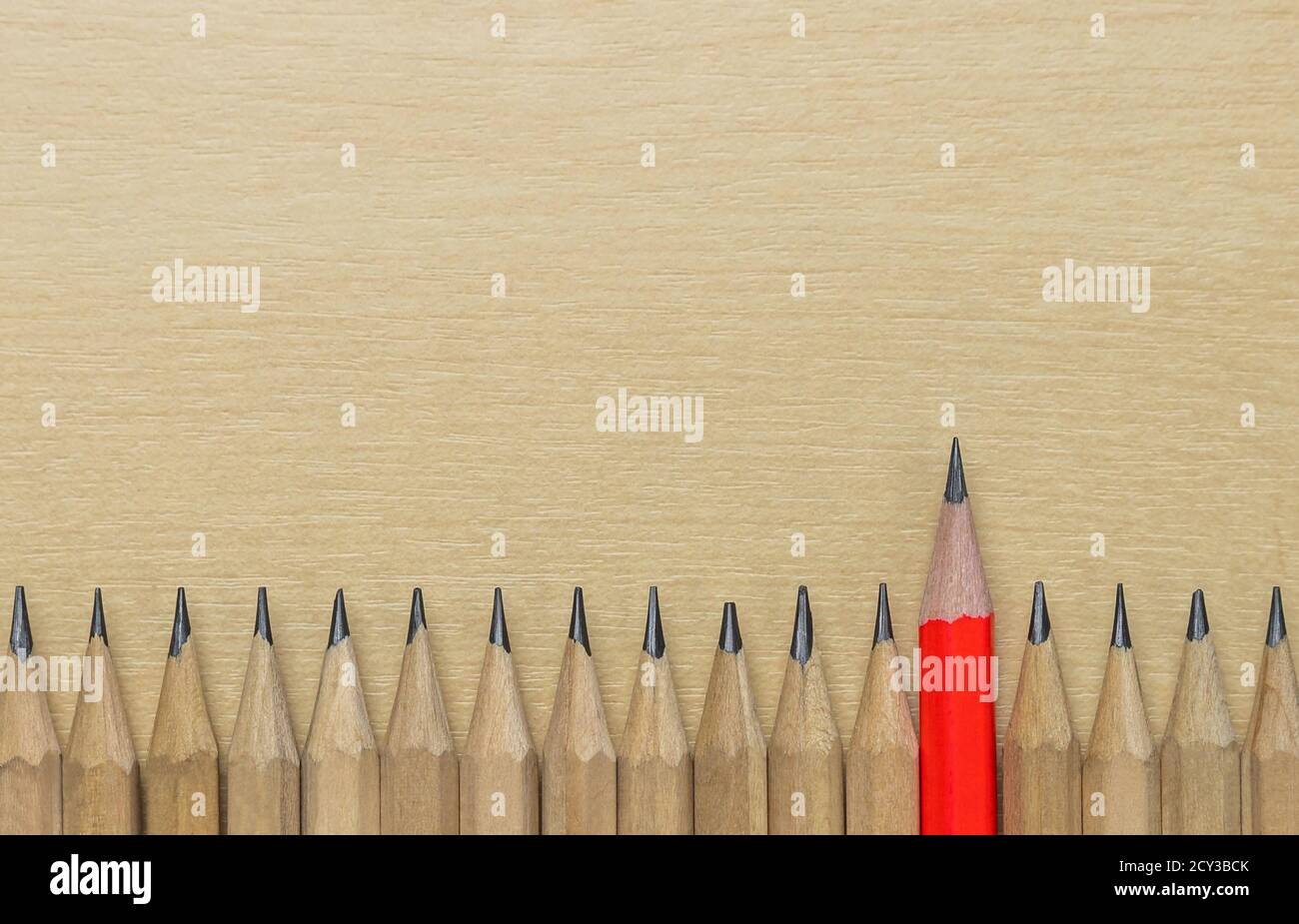 Different pencil standout from the others showing concept of unique business thinking different from the crowd and special one with leadership skill. Stock Photo